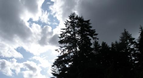 Washington State 09/09 {photo by sarah nean bruce}