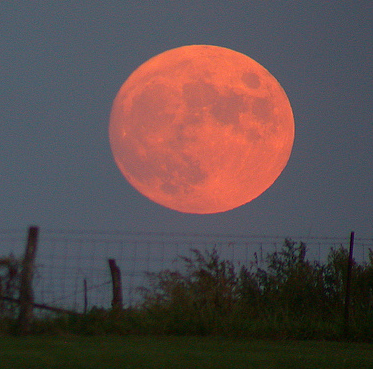 PIC_BLOG_2010-0928_Harvest_moon-WiKi_THUMB
