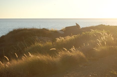 on 12/12 i drove up the PCH past L.A. County Line and just BREATHED it all in {photo by sarah nean bruce}
