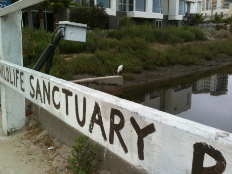 venice canals {photos by sarahneanbruce}